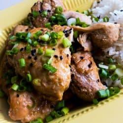 Instant Pot Soyaki Teriyaki Chicken Dump Meal