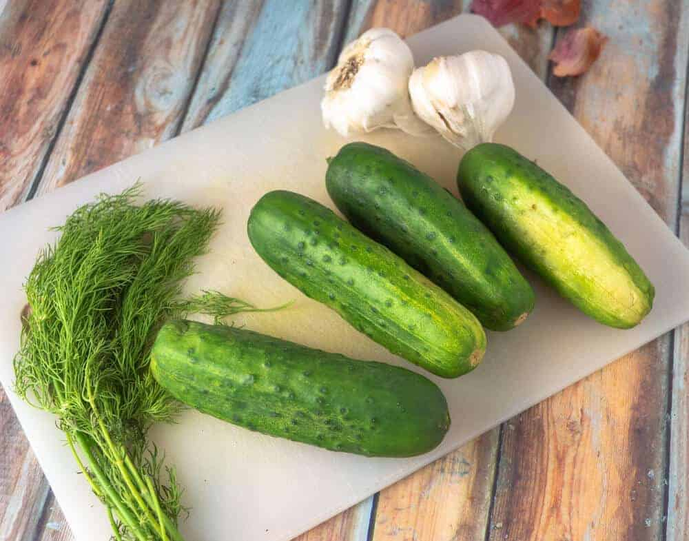 This is the best dill pickle recipe that uses very ingredients like vinegar, garlic, dill, salt and water.