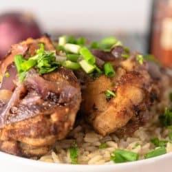 Instant Pot Greek Gyro Chicken