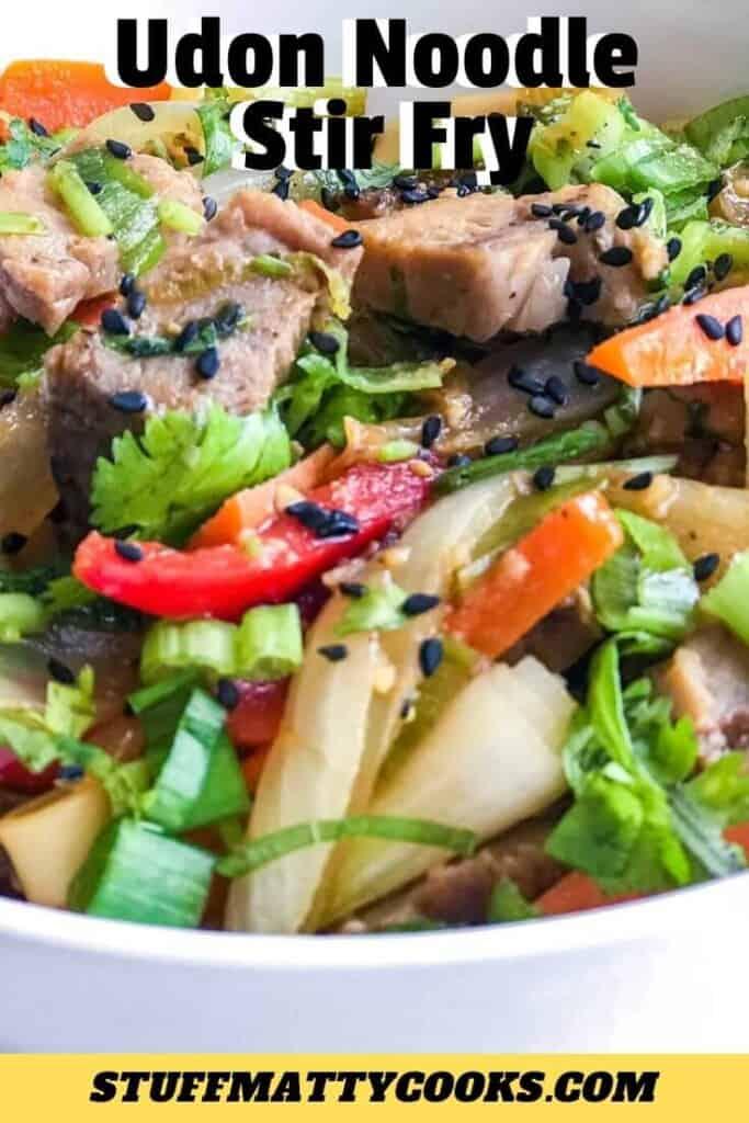 Udon Noodle Stir Fry with Vegetables and Pork