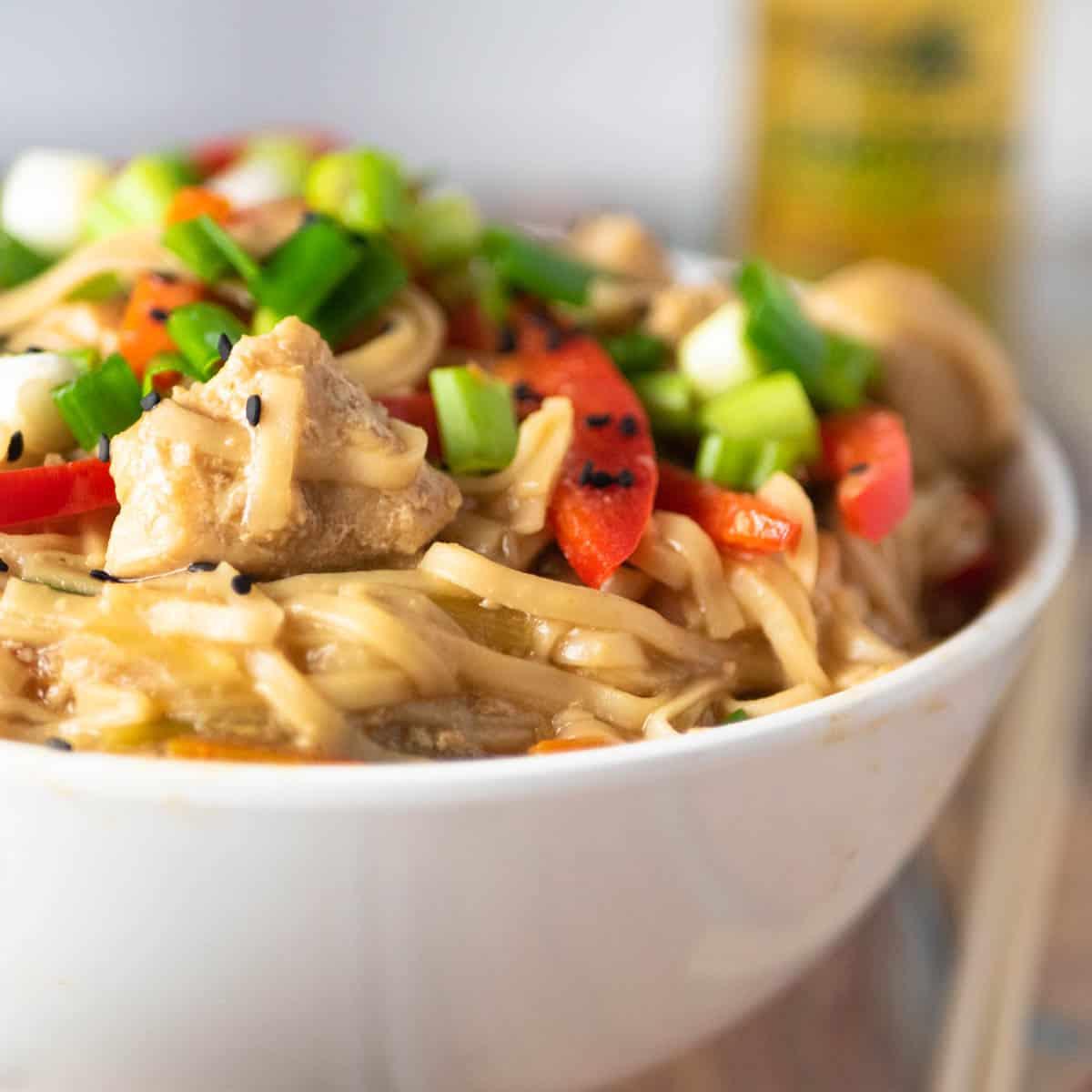close-up instant pot lo mein
